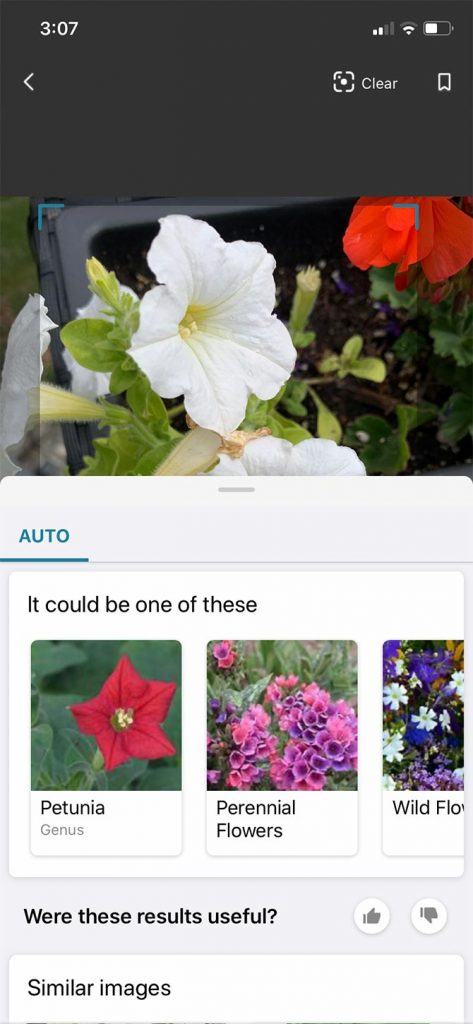 Bing Search - 3